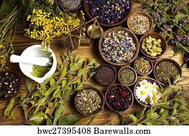 1,569 Magical herb Posters and Art Prints | Barewalls