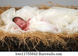 239 729 Baby Boy Posters And Art Prints Barewalls