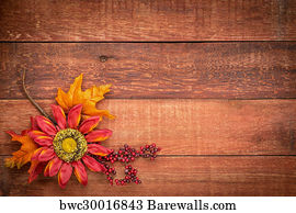 barn wood background. Grunge Barn Wood Background Art Print Poster - With Fall Decoration N