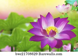 453 the egyptian symbol of water posters and art prints barewalls the egyptian symbol of water art print poster beautiful pink lotus flower in pond mightylinksfo