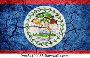 1 880 belize flag posters and art prints barewalls