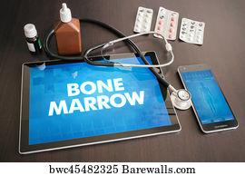 Bone Marrow Cancer Art Print Poster - Bone Marrow (cancer Related)  Diagnosis Medical Concept 450278e818d