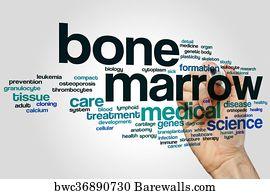 Bone Marrow Cancer Art Print Poster - Bone Marrow Word Cloud 976bdb16f03