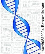 10 desoxyribonucleic posters and art prints barewalls desoxyribonucleic art print poster dna strand malvernweather Image collections