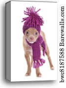 c4c1ab4b65736 Adorable chihuahua puppy wearing hat and scarf - Canvas Print