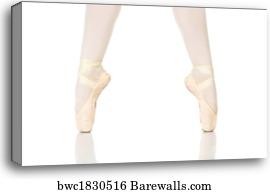 canvas print of ballet feet positions barewalls posters prints