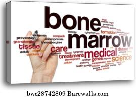 Bone Marrow Canvas Print - Bone Marrow Word Cloud b6c6238f837