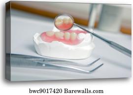 Acrylic denture (False teeth), Canvas Print | Barewalls