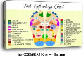 Add A Comment About This Artwork Write Foot Reflexology Chart