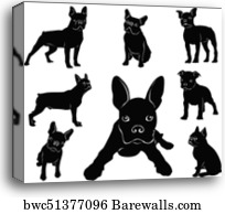 Boston Terrier, Canvas Print | Barewalls Posters & Prints