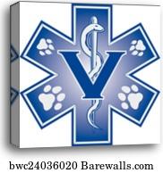 24 293 Veterinary Medicine Canvas Prints And Canvas Art Barewalls
