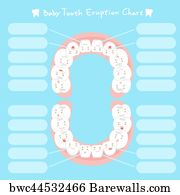 81 tooth eruption chart posters and art prints barewalls tooth eruption chart art print poster cartoon baby tooth eruption chart ccuart Images