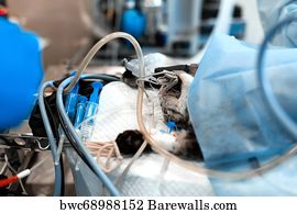 94 General anesthesia Posters and Art Prints | Barewalls