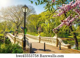 153 Bow Bridge Central Park Posters And Art Prints Barewalls