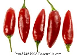 280 Scoville Posters and Art Prints | Barewalls