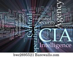 172 Secret definition Posters and Art Prints | Barewalls