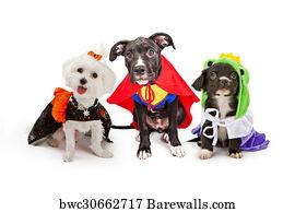 maltese dog wearing halloween costume art print poster cute puppy dogs wearing halloween costumes