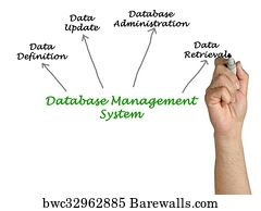 6268 database management system posters and art prints barewalls database management system art print poster diagram of database management system ccuart Choice Image