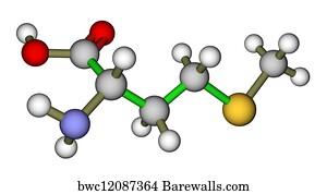 Essential Nutrients Art Print Poster Essential Amino Acid Methionine Molecular Structure