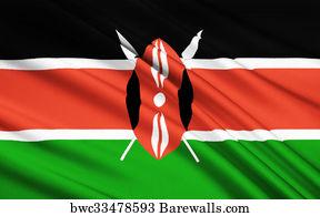 42 Maasai shield Posters and Art Prints | Barewalls