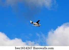 2,915 Float plane Posters and Art Prints | Barewalls