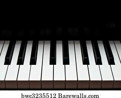 3,963 A grand piano Posters and Art Prints | Barewalls