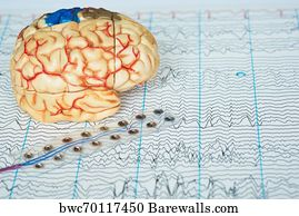 85 The electrical activity of the brain Posters and Art