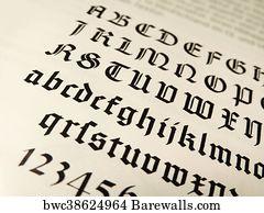 Calligraphy Alphabet Art Print Poster
