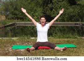 221 Iyengar Yoga Posters And Art Prints Barewalls