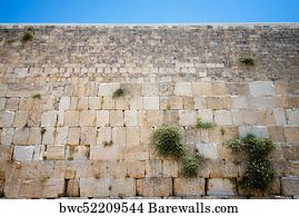 8,598 Western wall Posters and Art Prints | Barewalls