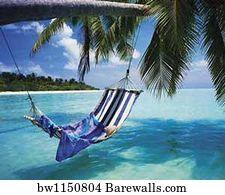 males art print poster   male   hammock 36795 males posters and art prints   barewalls  rh   barewalls