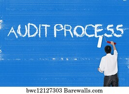 714 Process control plan audit Posters and Art Prints