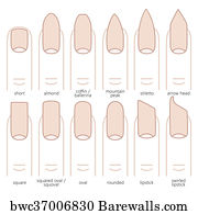 Art Print Of Nail Shapes