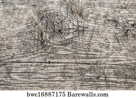 Curved Lines In Art : Lateral curved lines posters and art prints barewalls