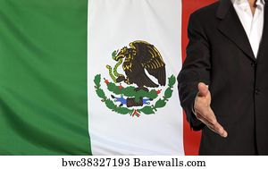 26 Mexican Golden Eagle Posters And Art Prints Barewalls