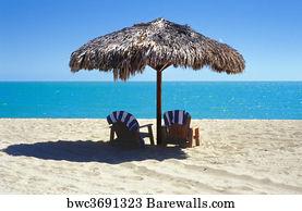 https://cdn-thumbs.barewalls.com/palapa-on-the-beach_bwc3691323.jpg