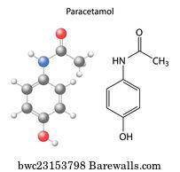 tylenol art print poster paracetamol model