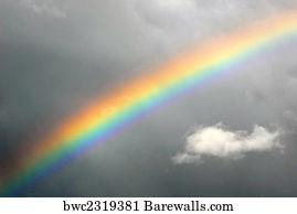 1 406 real rainbow posters and art prints barewalls