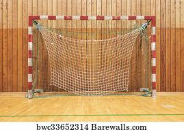 1,324 Indoor soccer goal Posters and Art Prints   Barewalls