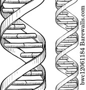 Art print of blueprint dna chains barewalls posters prints art print poster seamless dna double helix pattern malvernweather Image collections