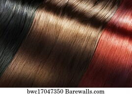Hair Extension Art Print Poster Shiny Color