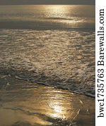 86 Hunting island state park Posters and Art Prints | Barewalls