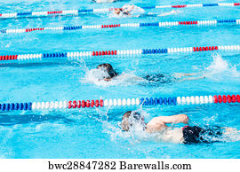 32 Swimming pool lane rope divider Posters and Art Prints ...