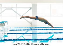 olympic swimmers art print poster young muscular swimmer jumping from starting block in a swimming - Olympic Swimming Starting Blocks