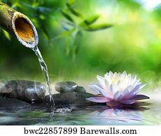32,580 Zen garden Posters and Art Prints | Barewalls on